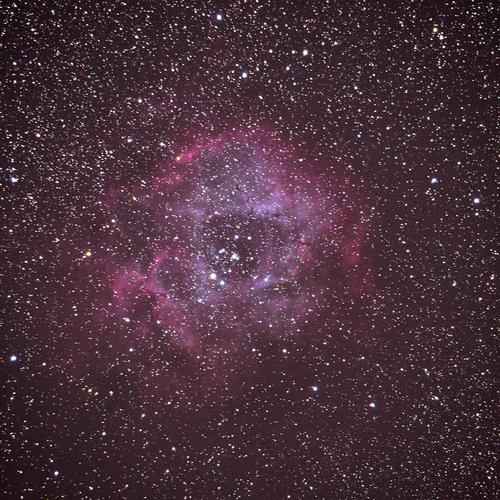 DSC_8769.jpg