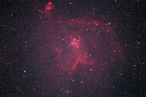 DSC_6876-rs.jpg